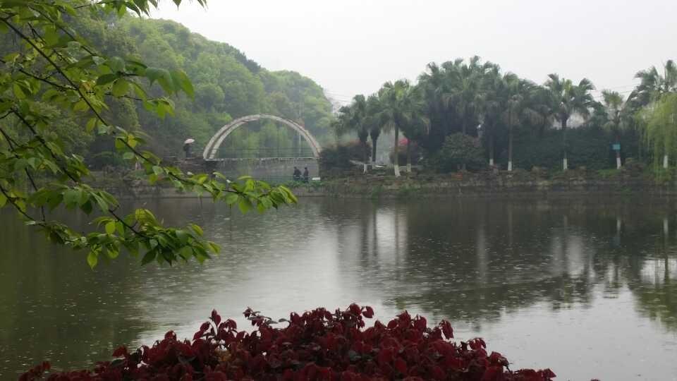 长沙王陵公园,嘻嘻!花好雨绵!