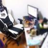 电脑椅被我坐断了,这个新买的刚刚到货