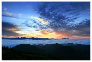诗兴大发:晨雾散,清风狂,夜雨过往小径...
