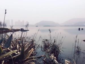 又到了西湖文化公园,咸嘉湖真大,人少还是挺舒服的。