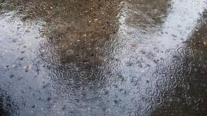 下雨了!好开心啊!好清爽!