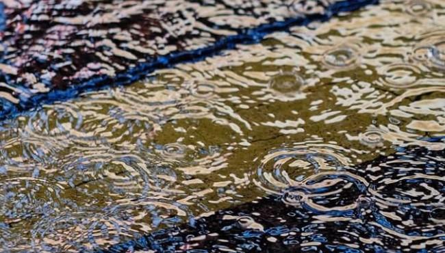 风淅淅,雨纤纤。难怪春愁细细添。记不分明疑是梦,梦来还隔一重帘。