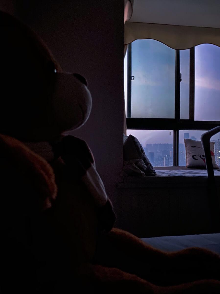 窗外蒙蒙亮,闹钟一直响。欣赏中……