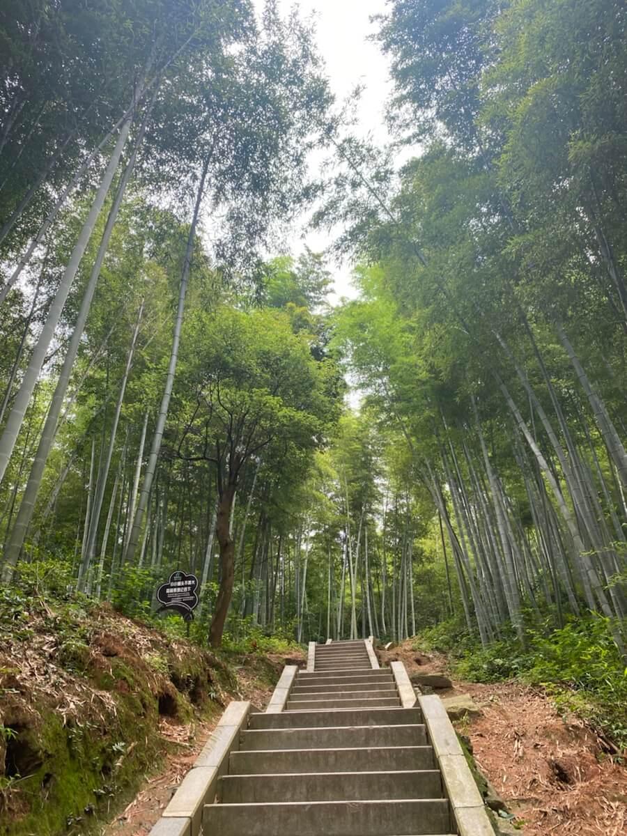 梅岭国家森林公园-狮子峰景区